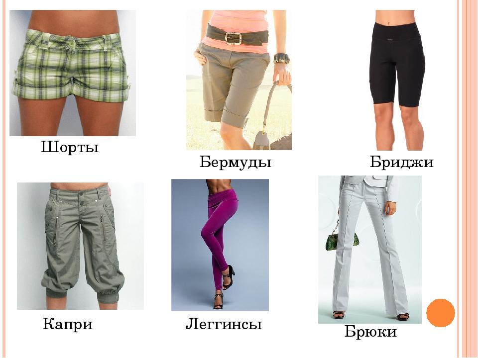 Бриджи, шорты, брюки